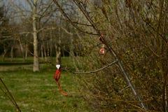 La pulsera hecha a mano es un símbolo de la primavera Foto de archivo libre de regalías