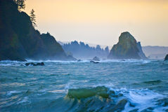 La Push Beach Stock Image