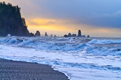 La Push Beach Royalty Free Stock Photos