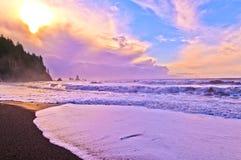 La Push Beach Stock Image