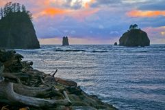 La Push Beach Forks Washington Royalty Free Stock Photography
