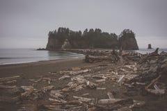 La Push Beach, Pacific coast, Washington USA Royalty Free Stock Photography