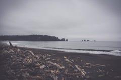 La Push Beach, Pacific coast, Washington USA Royalty Free Stock Images
