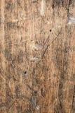 La quercia molto vecchia di legno di struttura, il legno ruvido non è uniforme Immagini Stock Libere da Diritti