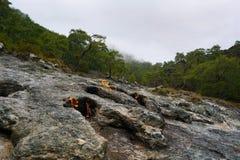 La quimera, las rocas ardientes es ot notable del punto el rastro de la manera de Lycian cerca de Cirali, Antaly foto de archivo