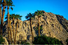 La Quinta, California Royalty Free Stock Photos