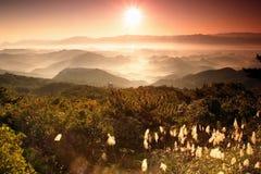 La ráfaga de Sun está pasando a través del valle Imagen de archivo libre de regalías