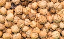 La récolte de noix photographie stock libre de droits