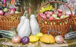 La récolte végétale est vendue à la foire photographie stock libre de droits