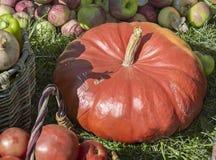 La récolte végétale est vendue à la foire image stock