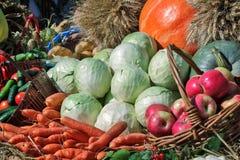 La récolte végétale est vendue à la foire images stock