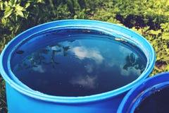 La réflexion de ciel et d'arbre dans l'eau barrel Image stock