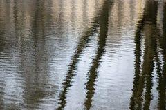 La réflexion des arbres de troncs dans l'eau ondule Photo stock