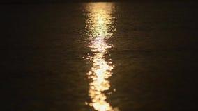 La réflexion du soleil d'été miroite dans l'eau par les bords de mer banque de vidéos