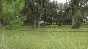La Région des lacs la Floride images stock