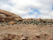La région orientale de désert de la Jordanie Paysages des déserts et des roches en pierre le long de la route à PETRA photographie stock libre de droits