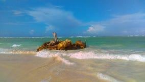 La république dominicaine Image stock