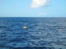 La République Dominicaine de mer bleue des Caraïbes Photographie stock