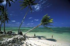 LA RÉPUBLIQUE DOMINICAINE DE MER DE L'AMÉRIQUE CARIBBIAN Photos libres de droits