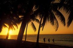 LA RÉPUBLIQUE DOMINICAINE DE MER DE L'AMÉRIQUE CARIBBIAN Images libres de droits