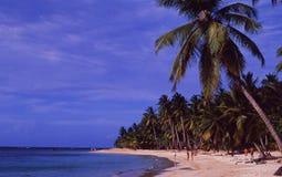 La République Dominicaine : Palm Beach sur l'île de saman | Dominikanische photo stock