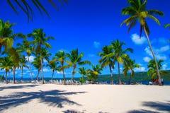 La république dominicaine Plage d'excursion de l'île de Cayo Levant photos stock