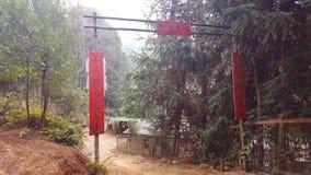 """La résidence du """"sauvage """"dans la forêt de montagne images libres de droits"""