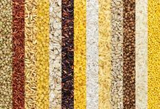 La raccolta degli ambiti di provenienza differenti dei chicchi, cereali struttura la raccolta closeup fotografia stock libera da diritti