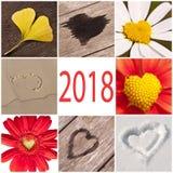 la raccolta 2018 dei cuori si è riferita con il concetto della natura, del nuovo anno e di giorno di S. Valentino Fotografia Stock Libera da Diritti