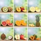 La raccolta dei frutti gradisce le arance, pesche, ananas, limoni Fotografia Stock