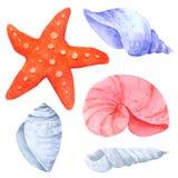 La raccolta dell'acquerello delle stelle marine e dei crostacei su fondo bianco, disegnato a mano per i bambini, la cartolina d'a illustrazione di stock