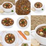 La raccolta delle minestre della minestra di lenticchia stufa con le lenticchie in ciotola Immagini Stock
