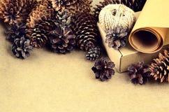 La raccolta naturale degli oggetti per handcraft (carta, pino e c attillata Immagine Stock Libera da Diritti
