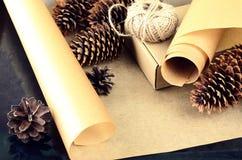 La raccolta naturale degli oggetti per handcraft (carta, pino e c attillata Fotografia Stock Libera da Diritti