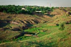 La radura verde Immagine Stock