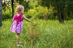 La ragazza accanto al piccolo albero Immagine Stock