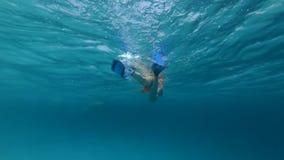 La ragazza adulta nuota lentamente nell'oceano video d archivio