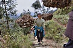 La ragazza agricola ha il peso sul giogo, l'area montagnosa Chin rurale Fotografia Stock Libera da Diritti