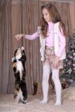 La ragazza alimenta il suo gatto Fotografie Stock
