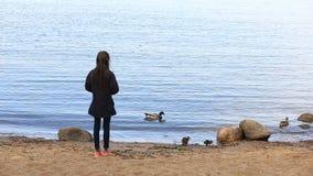La ragazza alimenta un'anatra con gli anatroccoli sulla riva del bacino idrico video d archivio