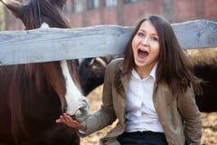 La ragazza alimenta un cavallo Immagini Stock