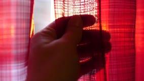 La ragazza apre le tende rosse e giocata con le sue mani attraverso i raggi del ` s del sole Primo piano della mano video d archivio