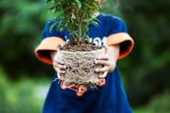 La ragazza asiatica del bambino che tiene il giovane albero per prepara la piantatura fotografia stock