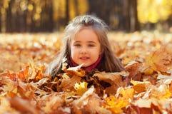 La ragazza bella piccola si trova in foglie di acero Fotografia Stock