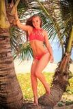 la ragazza bionda nei supporti del bikini fra le palme guarda in avanti Immagini Stock Libere da Diritti