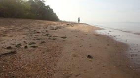 la ragazza castana funziona lungo il bordo dell'acqua all'alba stock footage