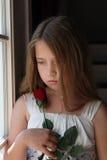 La ragazza che esamina è aumentato Fotografie Stock Libere da Diritti