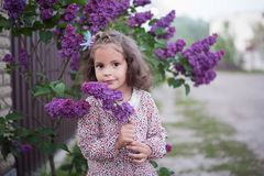 La ragazza con capelli ricci in primavera vicino ad un cespuglio lilla immagine stock