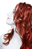 La ragazza con capelli rossi Fotografia Stock