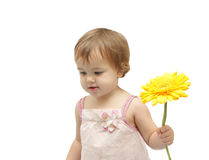 La ragazza con il gerbera giallo Fotografie Stock